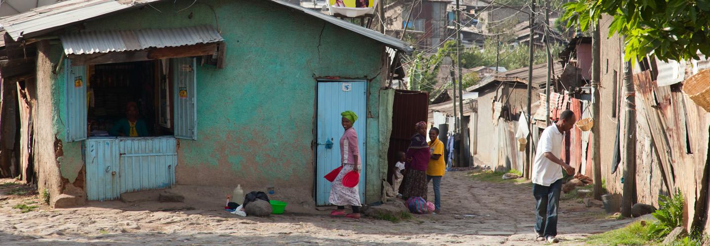 Addis Ababa, Ethiopia © aleksandr hunta / Shutterstock