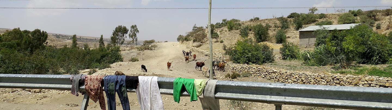 On the road to Wukro town, Ethiopia © Katrina Charles/REACH