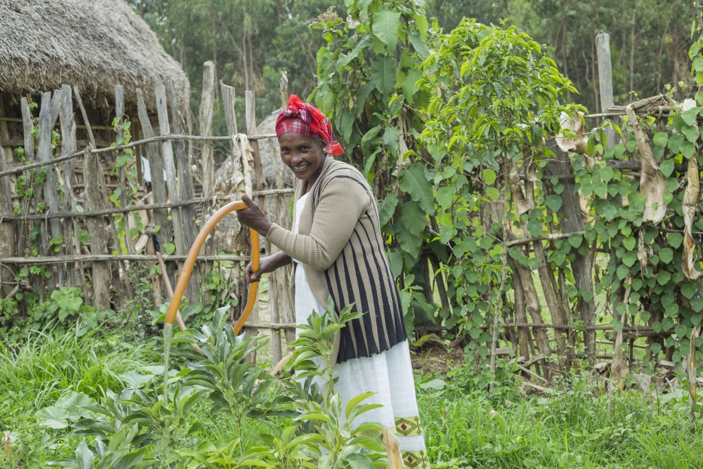 Ethiopia farmer using groundwater for irrigation