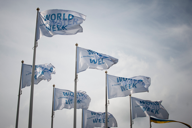World Water Week flags