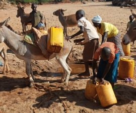 Women and children collecting water from a riverbed