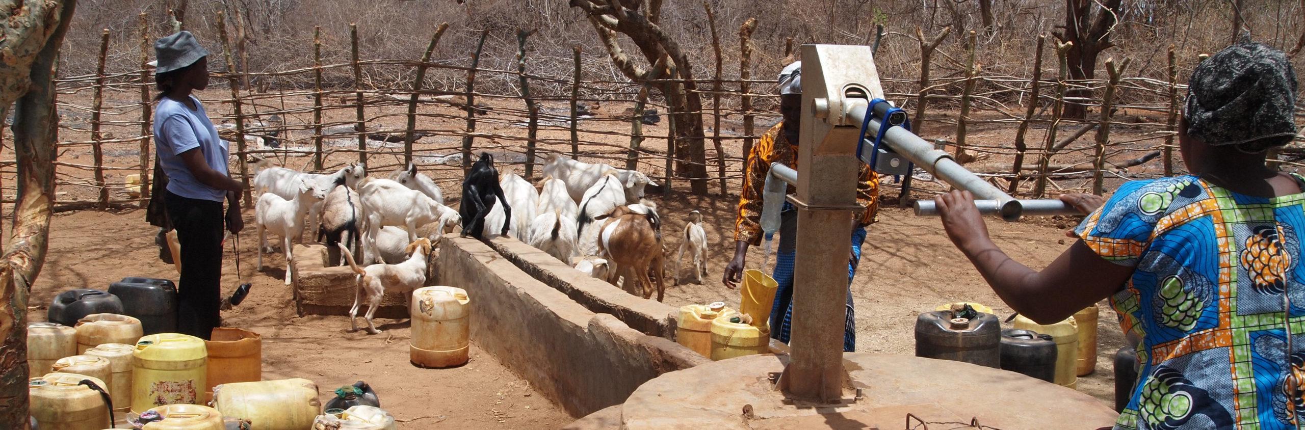 Woman collecting water at a hand pump in Kyuso, Kenya